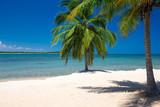 tropical beach - 170556785