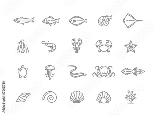 Set of vector fish and sea food line icons. Shrimp, oyster, squid, crab, ell, fugu, lobster, carp, sturgeon, jellyfish, octopus, turtle, starfish, coral, sell, seahorse and more. Editable Stroke.
