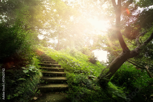 Foto op Canvas Beige art beautiful peaceful Landscape; path in the old park