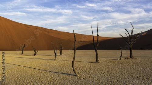 Foto op Plexiglas Blauwe hemel Deadvlei Namibia