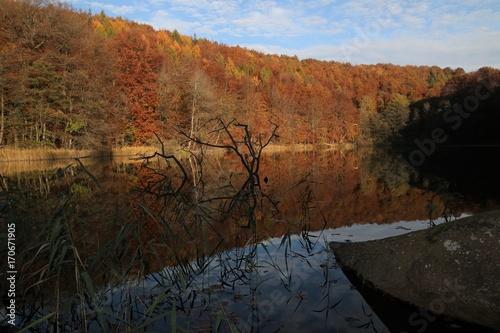 Papiers peints Noir Idylle und unberührte Natur am malerischen Ukleisee im Herbst