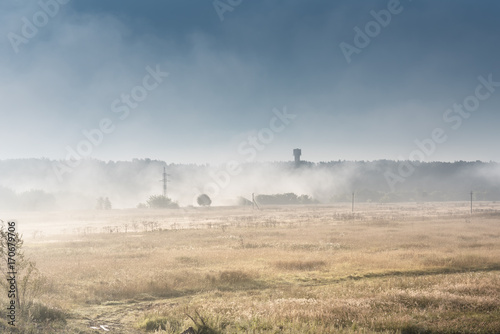 Beautiful field landscape of foggy misty field with trees in Autumn Fall - 170679706