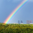 rainbow in blue sky over city and green trees