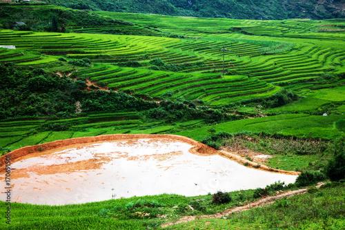 Fotobehang Groene terraced green rice fields around Sa Pa, Vietnam