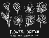 Set of Doodle sketch flower Hand drawn Sketch line vector illustration eps10