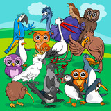 birds group cartoon illustration - 170697389