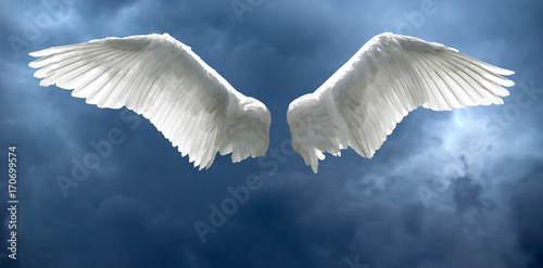 Angel wings with stormy sky background - 170699574