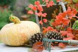 l'automne, et ses branches et ses légumes - 170720529