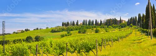 Fotobehang Toscane Toskana-Panorama, bei Montespertoli