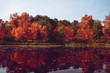 Autumn . Fall scene. Beautiful Autumnal park. Beauty nature scene. Autumn landscape, Trees and Leaves, Reflection on the water