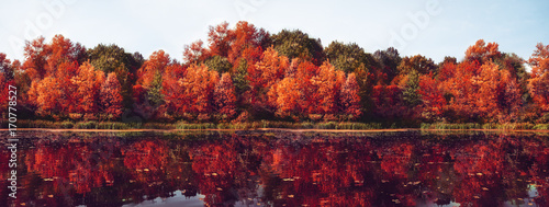 Papiers peints Automne Autumn Panorama. Fall scene. Beautiful Autumnal park. Beauty nature scene. Autumn landscape, Trees and Leaves, Reflection on the water
