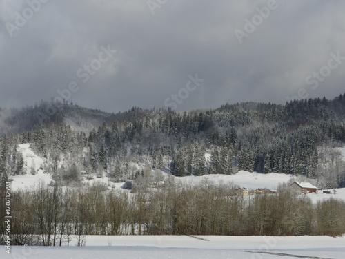 Fotobehang Donkergrijs Winter landscape