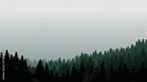 Fotobehang Zwart Landscape with silhouettes of trees in misty forest and light grey sky - vector illustration