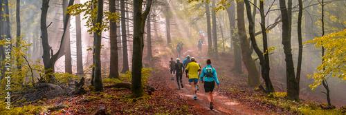 canvas print picture Joggen im Herbst, stimmungsvolles Waldpanorama