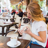 young woman with a pug in a street cafe
