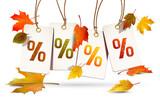 Hängende Herbst Etiketten mit bunten Herbstblättern - Prozente - 170873962
