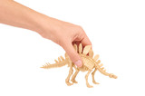 Plastic Toy Animal Dinosaur Skeleton in hand isolated on white background