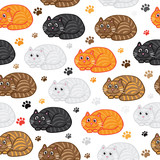 Cute vector cats seamless pattern. Funny doodle wallpaper.