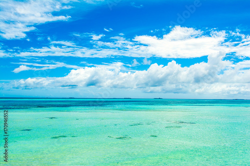 Poster Groene koraal Beautiful landscape of clear turquoise Indian ocean, Maldives islands