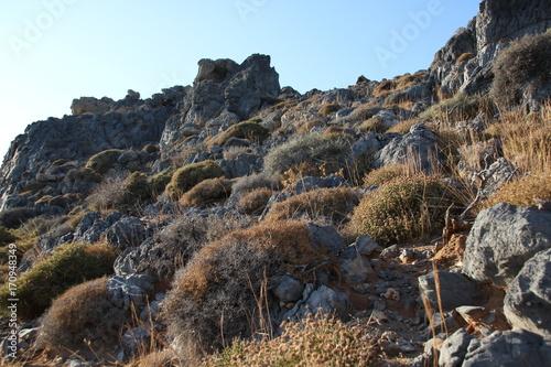 Foto op Canvas Grijze traf. Kreta