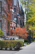 Autumn in the City.  Autumn colors in one of Chicago's many upscale neighborhoods.