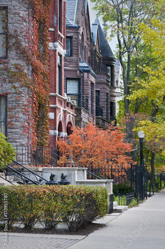 Fotobehang Chicago Autumn in the City. Autumn colors in one of Chicago's many upscale neighborhoods.