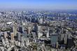 大崎駅上空/Aerial view