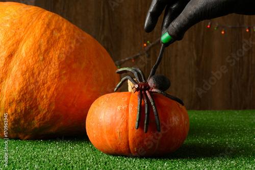 Papiers peints Automne Hand holding toy spider against pumpkins