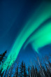 Defined green Aurora borealis cross the sky like brush strokes