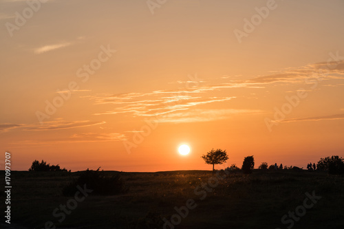 Fotobehang Ochtendgloren Colorful sunset by a plain grassland