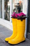 Fototapety gelbe Gummistiefel mit Pflanzen - planted rubber boots