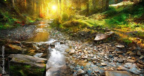 Papiers peints Automne Autumn scene. Mountain spring, forest landscape