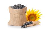 sunflower seeds in sack - 171016700