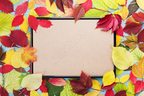 Picture frame and autumn leaves around top view. Mockup for fall sale. Copy space for text.