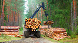 Lumberjack with modern harvester working in a forest. Wood as a source renewable energy.  - 171039502