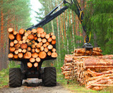 Lumberjack with modern harvester working in a forest. Wood as a source renewable energy.  - 171039558