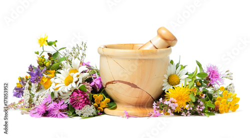Mortar with herbal plant