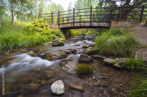 Papiers peints Rivière de la forêt walking path with a wooden bridge over a little creek in a town park