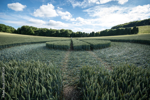 Aluminium UFO Crop circle at East Kennett, Wiltshire, England, viewed at ground level