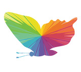fly butterfly multicolored abstract icon