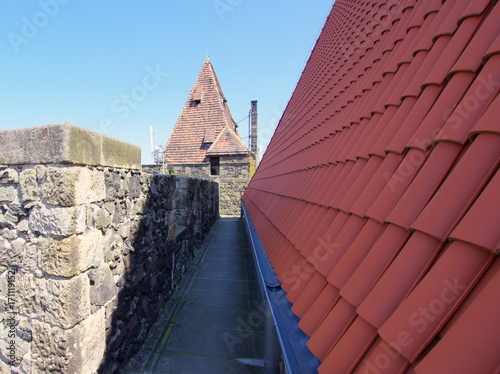 Spacer po murach obronnych zamku Grodziec na Dolnym Śląsku - lekcja z historii