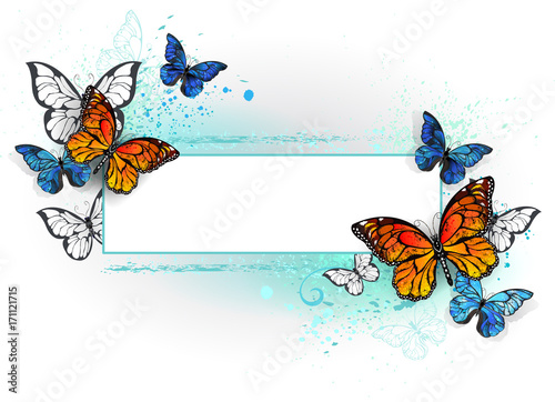 Foto op Plexiglas Vlinders in Grunge Rectangular banner with butterflies monarchs