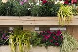 Vertikaler Garten für draußen und drinnen, Balkon, Landhausstil - 171125717