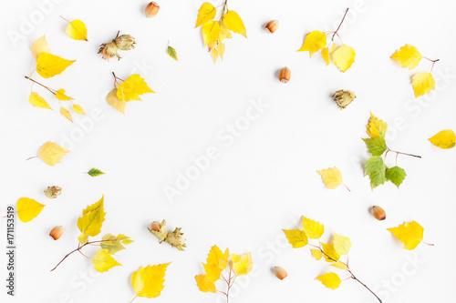 Autumn frame made of birch tree leaves, hazelnuts on white background. Autumn, fall concept. Flat lay, top view, copy space