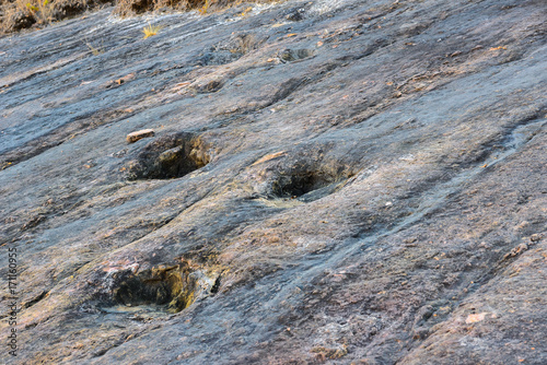 Real dinosaur footprints, Torotoro National Park, Potosi, Bolivia Poster
