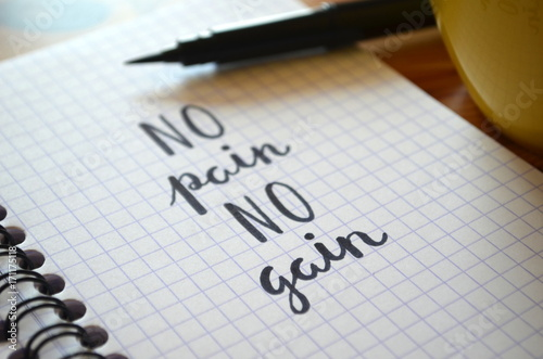 NO PAIN NO GAIN hand lettering in notebook Poster