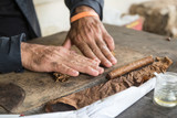 Cuban master showing how to hand roll a cigar
