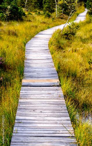 Fotobehang Bruggen wooden footpath