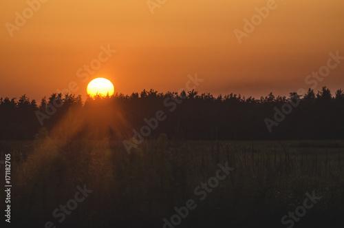 Poster Oranje eclat gloomy sunset in the field