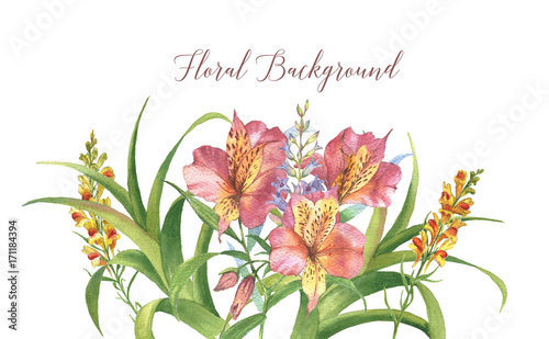 Hand-drawn watercolor floral tropical background with alstroemeria and tropical plants.  Floral template for greeting card, wedding invitation, advertisement, banner, poster, flyer.